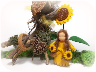Sonnenblume Blumenkind