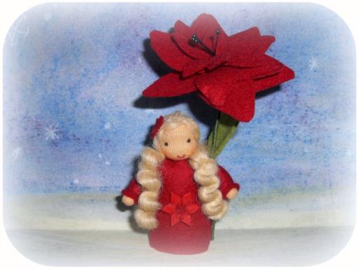 Blumenkinder Winter, Weihnachtsstern