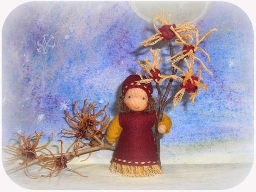 Zaubernuss, Jahreszeitentisch